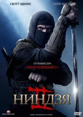 Ниндзя 2 (2013) Скачать Торрент
