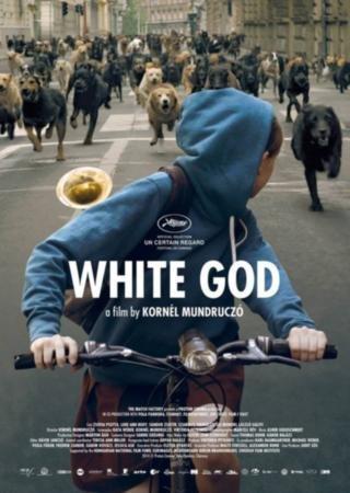 Белый Бог (2014) HDRip Скачать Торрент