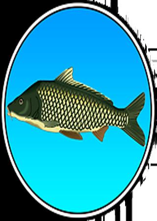 Реальная рыбалка v 1.4.0.45 (2014) Android Скачать Торрент