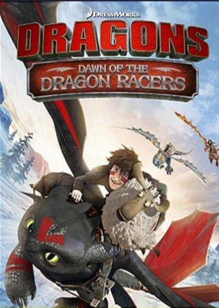 Драконы: Гонки бесстрашных. Начало (2014) BDRip Скачать Торрент
