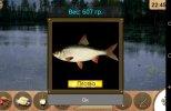 Реальная рыбалка v 1.4.0.45 (2014) Android
