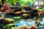 Violett [Update 4] (2013) Steam-Rip от Let'sРlay