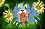 Том и Джерри: Волшебник из страны Оз (2011) HDRip