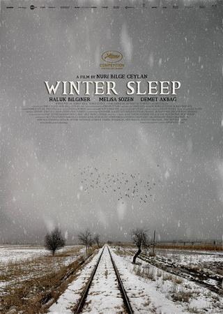 Зимняя спячка (2014) HDRip